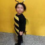 carnaval sala das abelhinhas